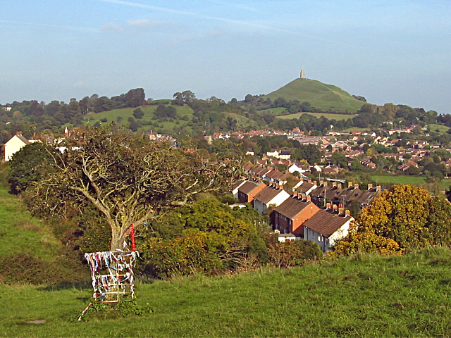 Holy Thorn on Wearyall Hill