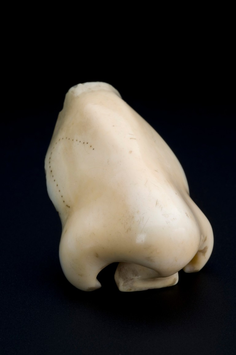 Ivory Prosthetic Nose