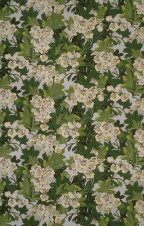 Mary Ratcliffe Spring blossom